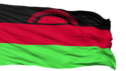 Waving national flag of Malawi Stock Video Footage