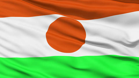 Waving national flag of Niger Stock Video Footage