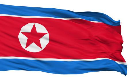 Waving national flag of North Korea Animation