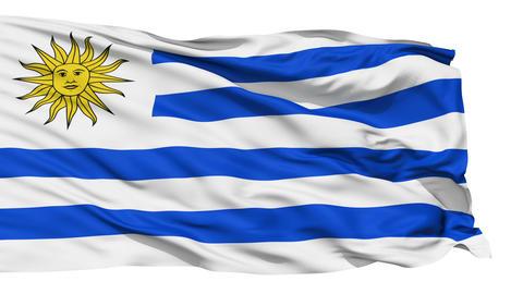 Waving national flag of Uruguay Stock Video Footage