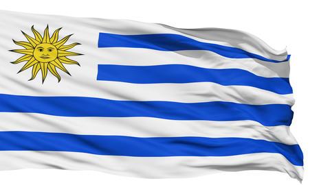 Waving national flag of Uruguay Animation
