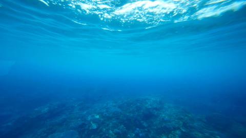 Underwater loop Stock Video Footage