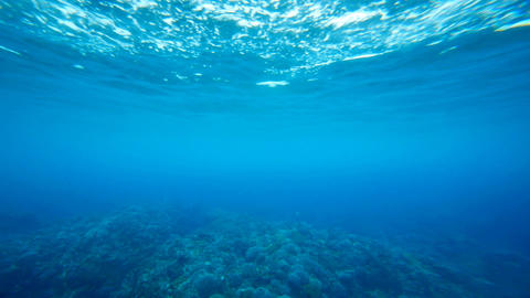 Underwater loop Stock Video Footage