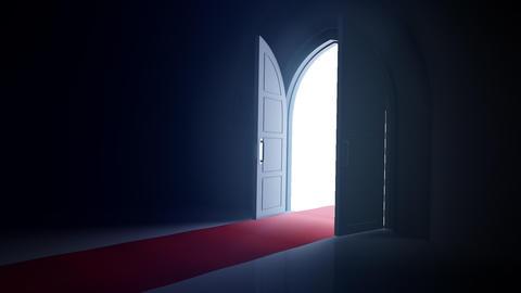 Door Opening CD R1 Fix HD Stock Video Footage