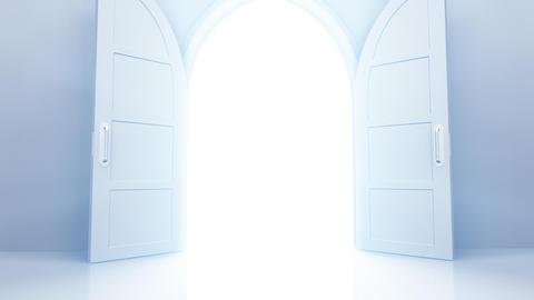 Door Opening CW L1 In HD Stock Video Footage