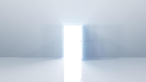 Door Opening SW F1 Fix HD Stock Video Footage