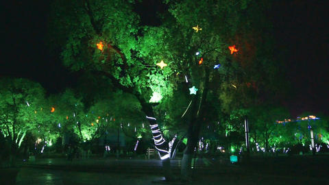 Heihe City Night Park Inside View With Stars Stock Video Footage
