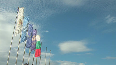 flags 5 Stock Video Footage