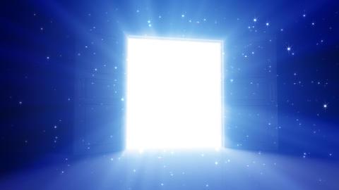Door Opening DD L1 In2 HD Stock Video Footage