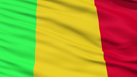 Waving national flag of Mali Stock Video Footage
