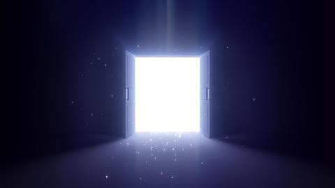 Door Opening Floor DD F1 In3 HD Stock Video Footage