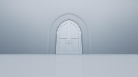 Door Opening sky2 CW M1 In HD Stock Video Footage