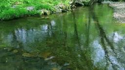 新緑の高原と流れ Footage