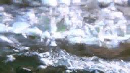 新緑の高原の清流の流れ Footage