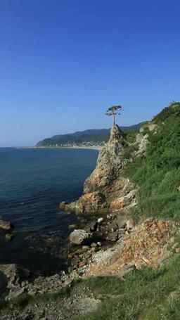夏の日本海 영상물