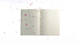 開いた本に舞い落ちる多くの桜の花びら Footage