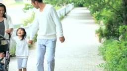 ベビーカーを押しながら並木道を歩く4人家族 Footage