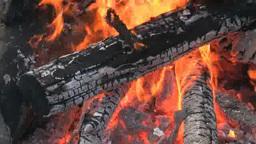 燃える焚き火の炎 Footage