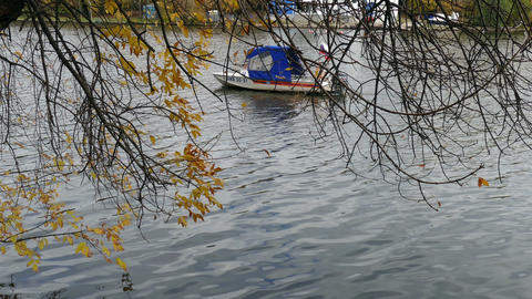 Boat on the background of autumn branches Footage