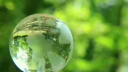 地球儀と緑 Footage