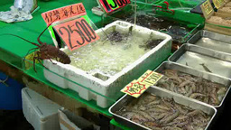 Lobsters and shrimps displayed at Market Footage