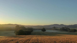 Morning scene at grassy meadow in France Footage