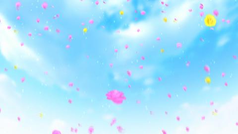 Flower shower フラワーシャワー ライスシャワー Stock Video Footage