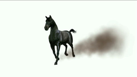 horse running with dust Stock Video Footage