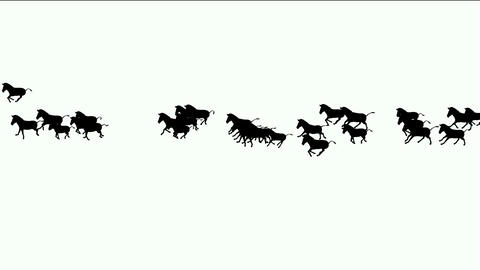 a group of horses silhouette running Stock Video Footage