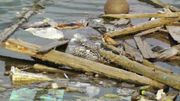 Garbage in Water 01 pollution Footage