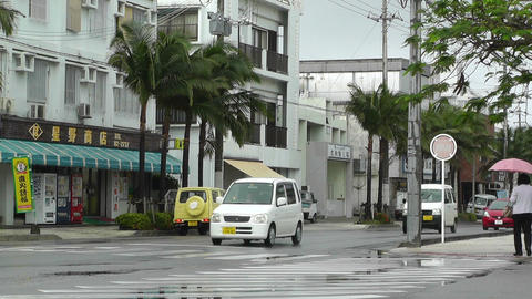 Ishigaki Okinawa Islands 05 Stock Video Footage