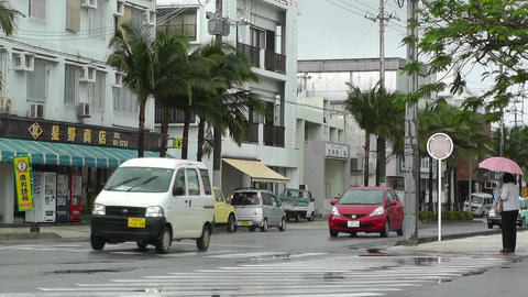Ishigaki Okinawa Islands 05 Stock Video Footage