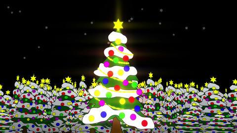 クリスマスツリー Stock Video Footage
