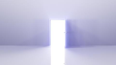 Door Opening SW F1 Fix 5 HD Stock Video Footage