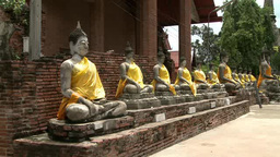 Statues of buddhas in Ayutthaya, Thailand Live Action