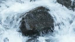 ハイスピード 水の流れ Live Action