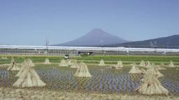 富士市側から富士山と藁束と東海道新幹線 Footage