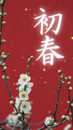 金の紙吹雪と白梅に初春の文字 ภาพวิดีโอ