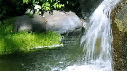溶岩石と滝の池 stock footage