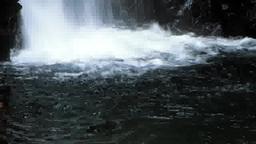 森の中の滝つぼ Footage