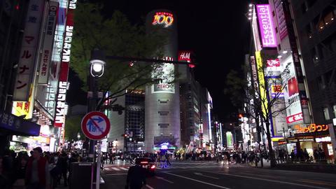 17of 23 People , traffic , buildings , neon lights , Shibuya , Tokyo , Japan , A Footage