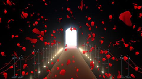 Door Opening CD F2 In 6 Flower HD Stock Video Footage