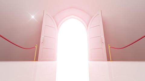 Door Opening CW M1 In 6 Flash HD Stock Video Footage