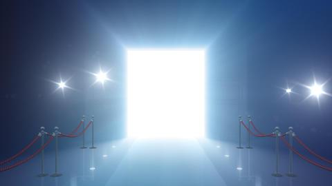 Door Opening DD F2 In 6 Flash HD Stock Video Footage