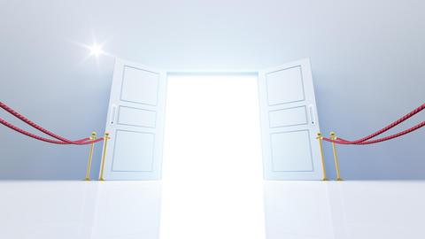 Door Opening DW M1 In 6 Flash HD Stock Video Footage