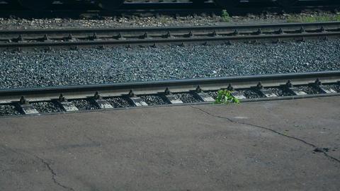 Railroad car wheels Stock Video Footage