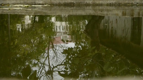 tree and house scene reflex in pond,wave on water surface Footage