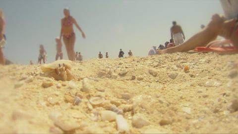 cancer at the beach Stock Video Footage