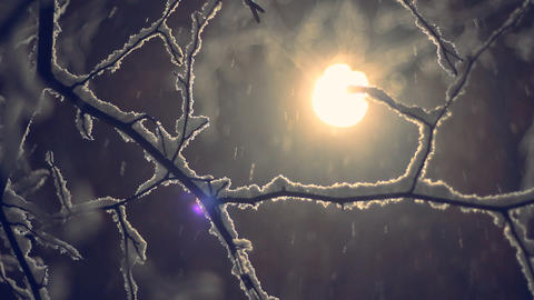 winter snow background Stock Video Footage
