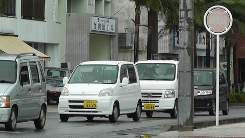 Ishigaki Okinawa Islands 07 Stock Video Footage